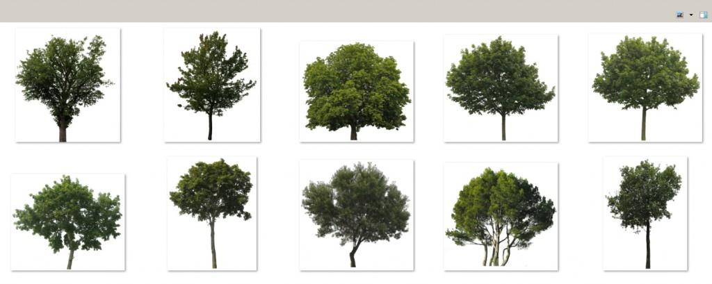 20_quick_forest_tutorial_07
